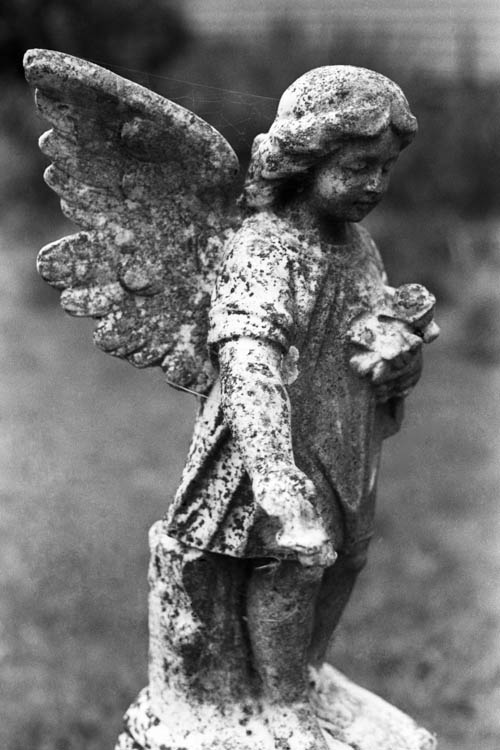 stone_angel_wrk