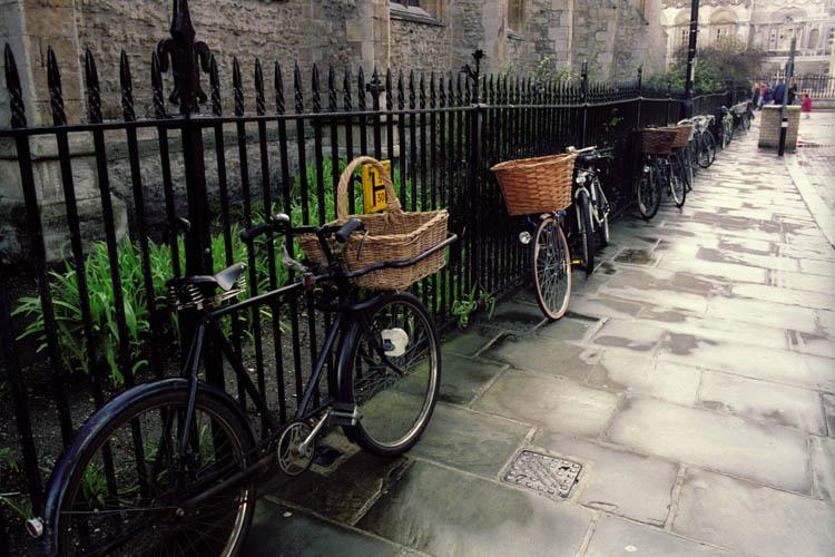 bikes_on_fence_wrk