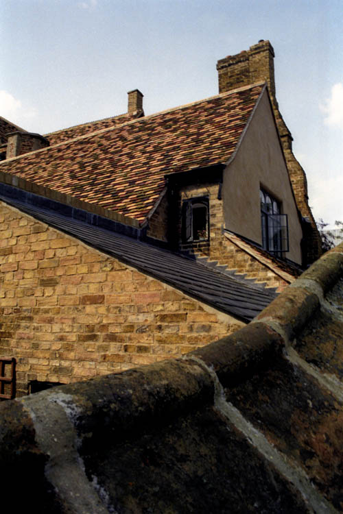 roof_line_windows_wrk