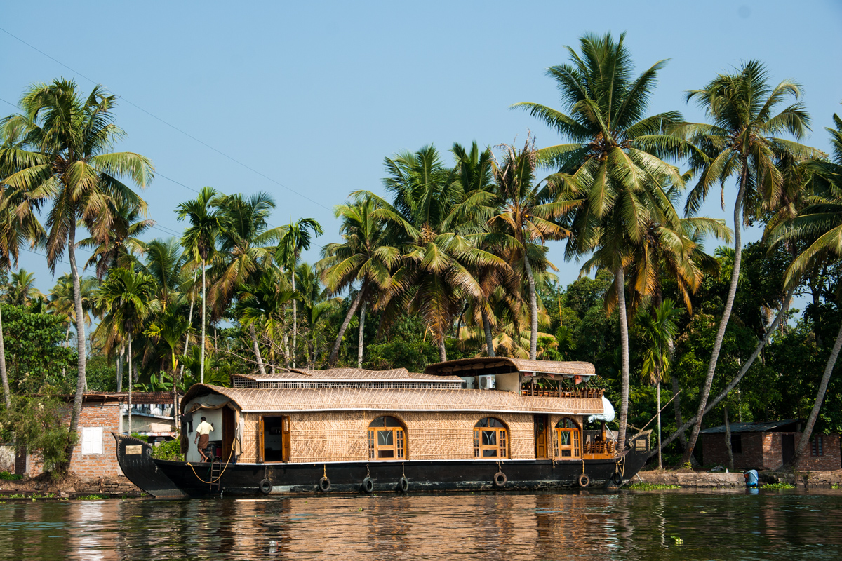 Houseboat and Palms