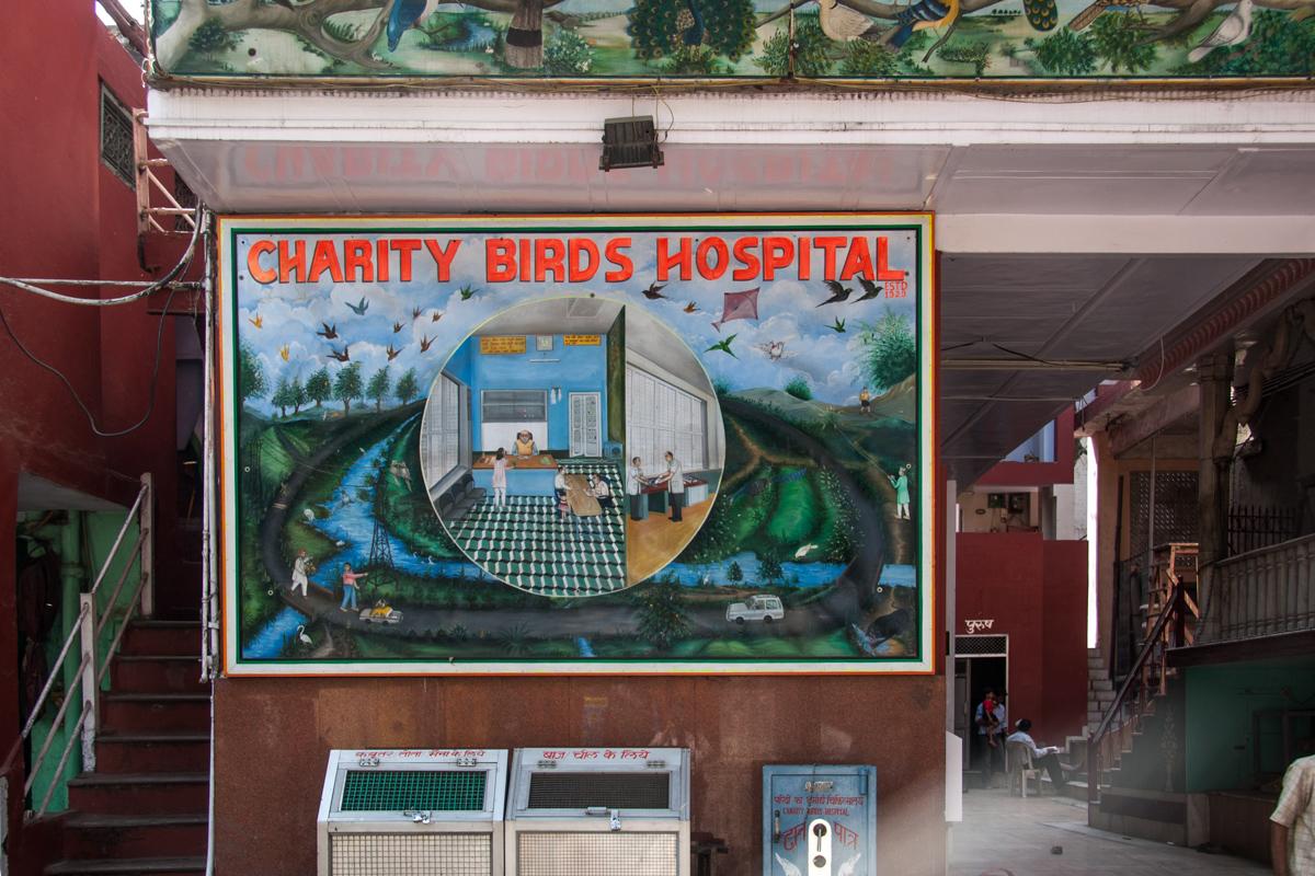 Hospital Mural