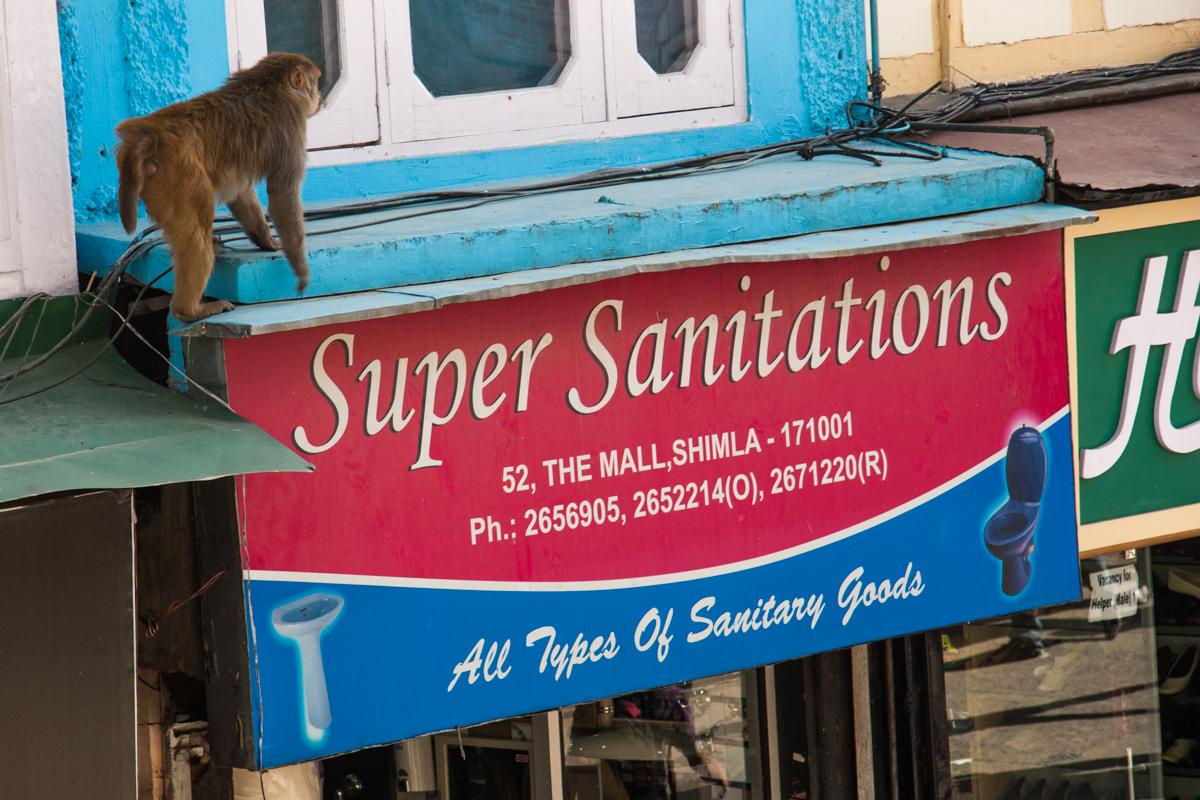 Super Sanitations