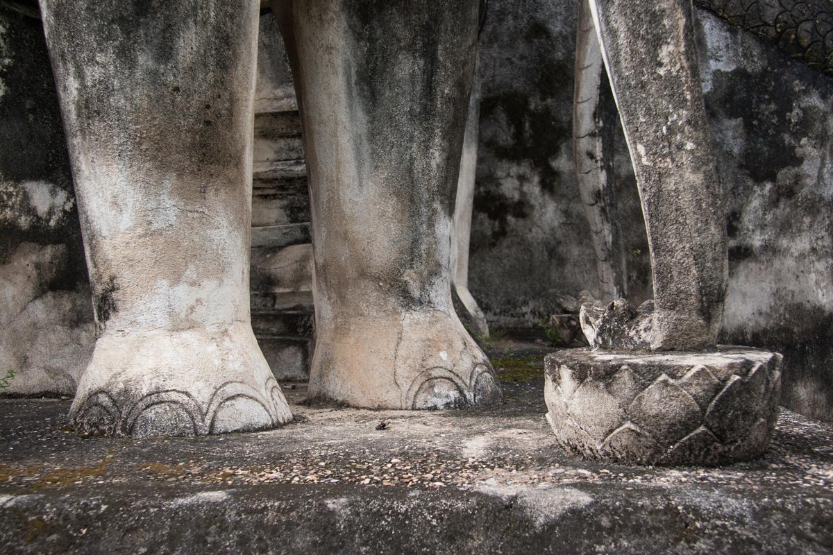 Feet of the Elephant