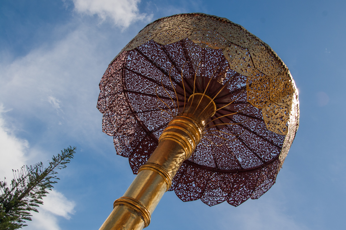 Golden Parasol