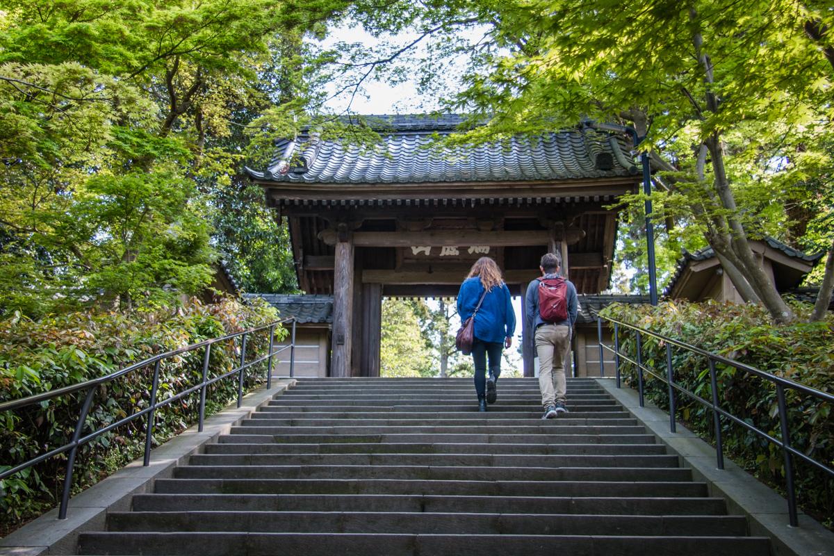 Climbing Up to Engaku-ji