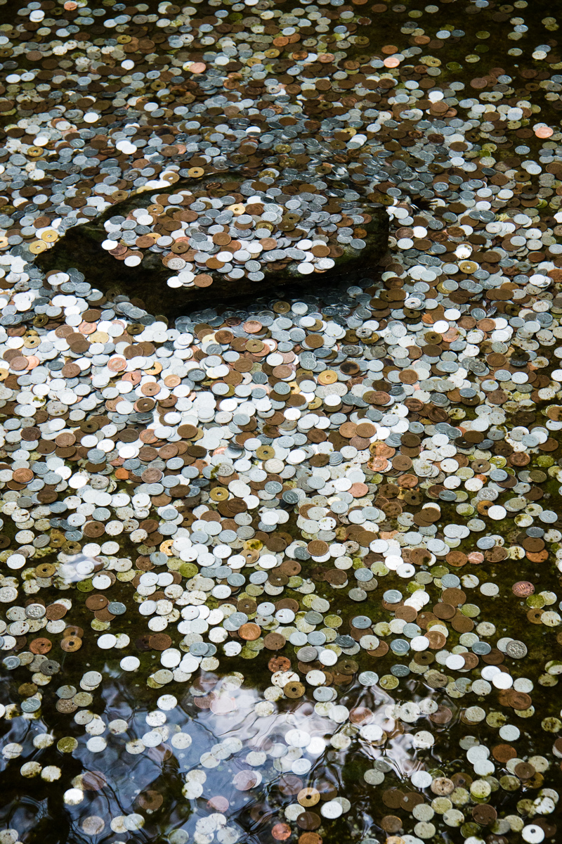Wishing Coins