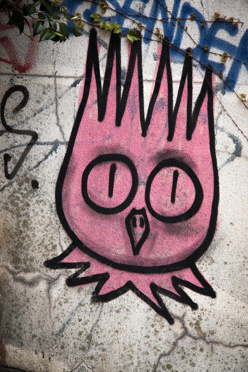 Manic Owl
