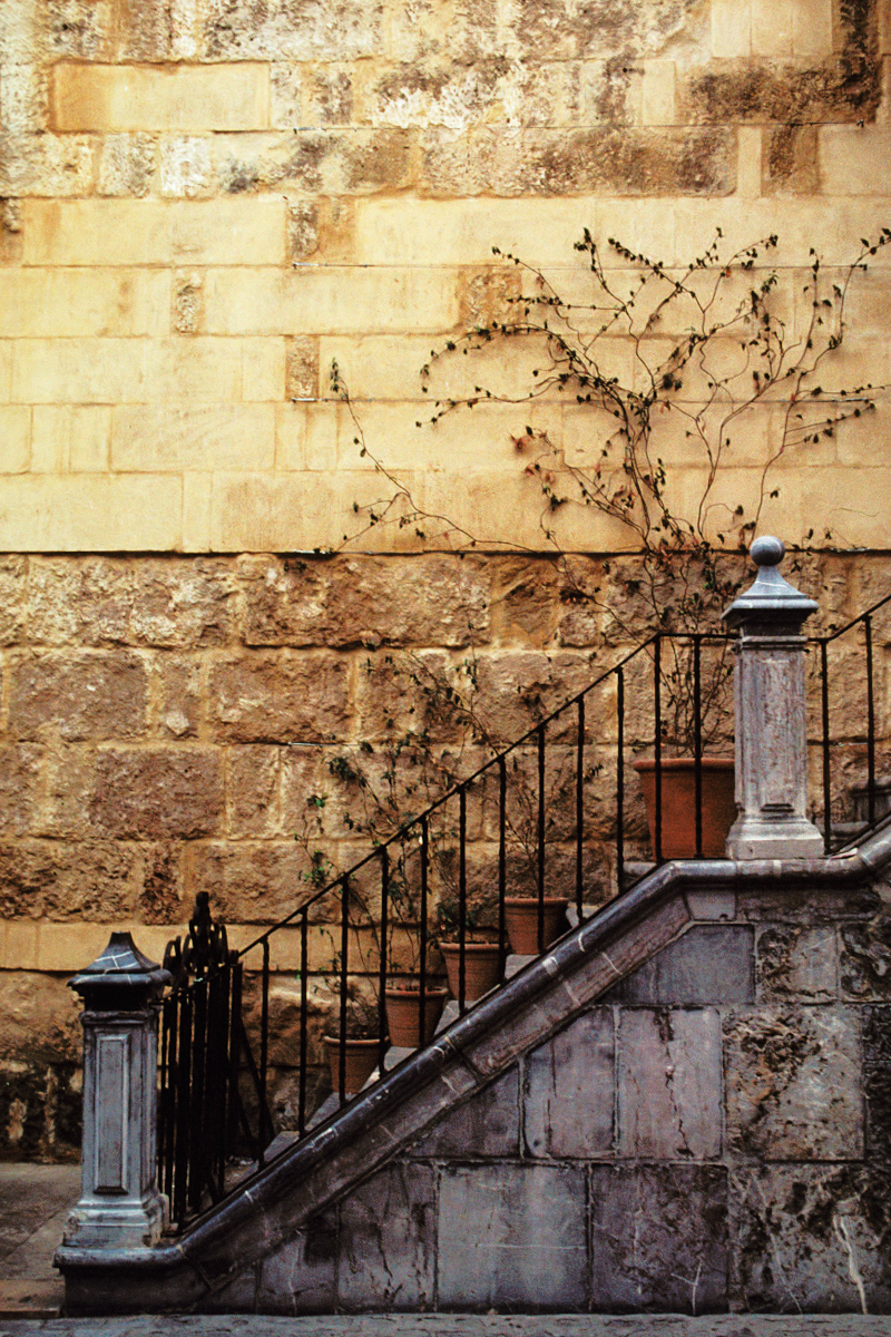 Wall with Steps and Pots