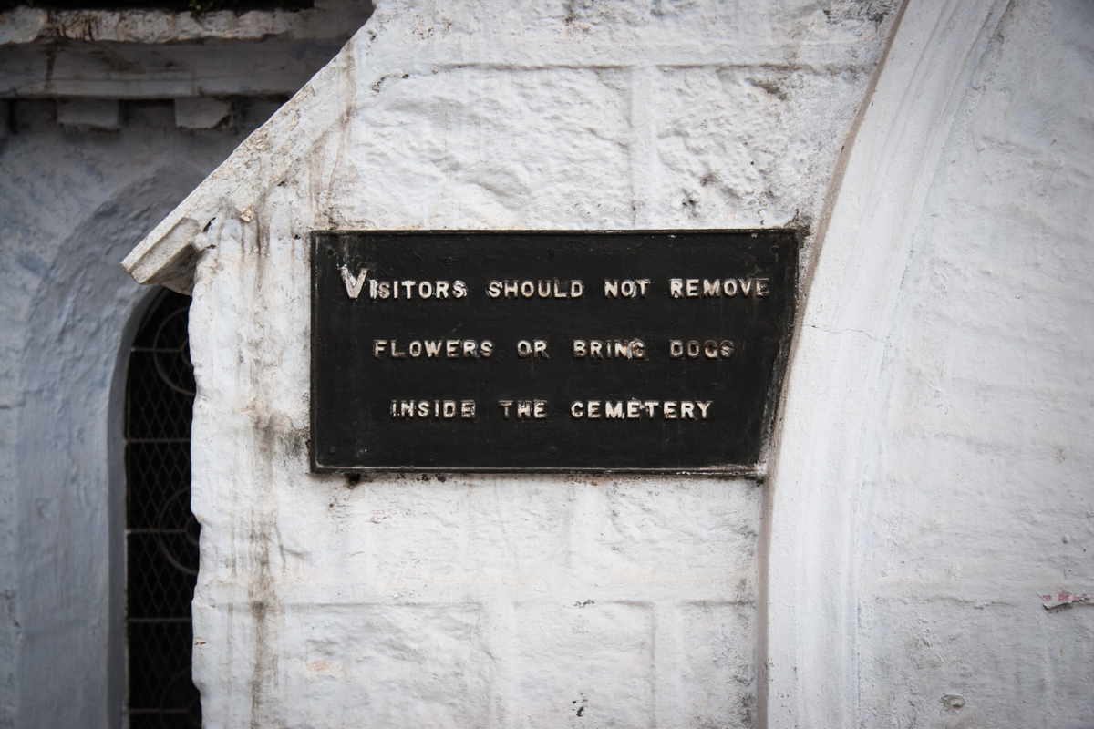 Visitors Should Not Remove Flowers