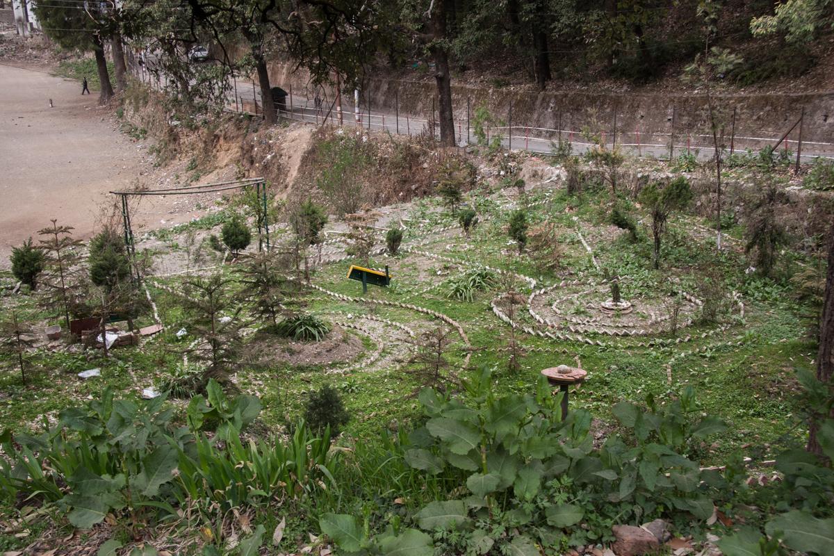 Reclaimed Garden