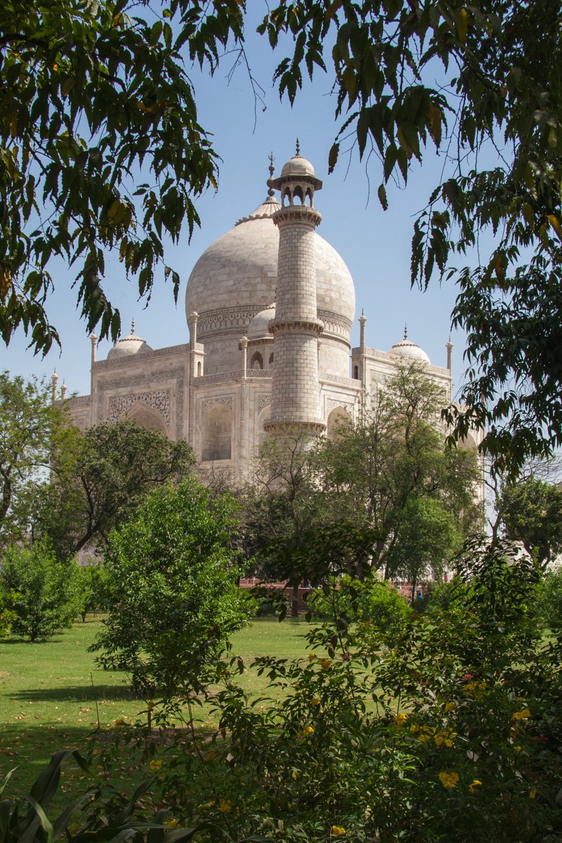 The Taj from the Garden