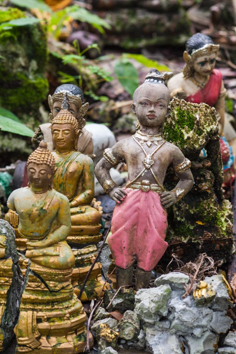 Doll Among the Buddhas