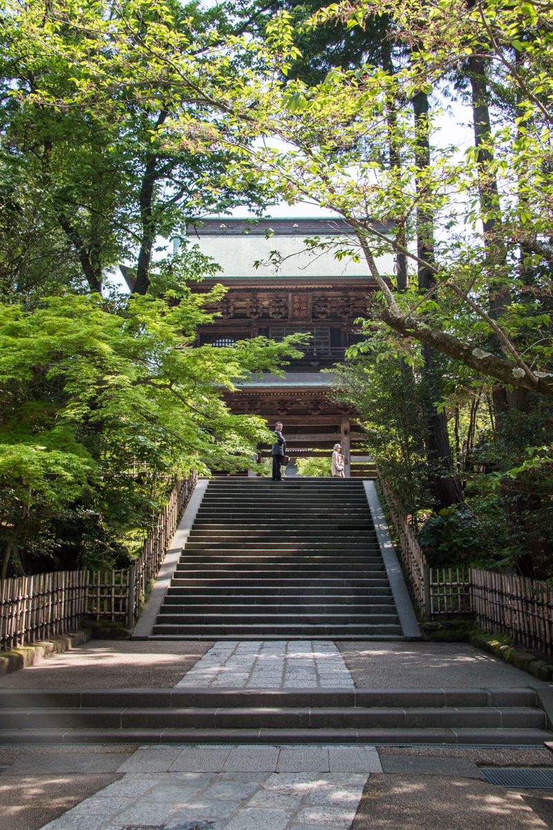 Looking Up Toward the Sanmon Gate