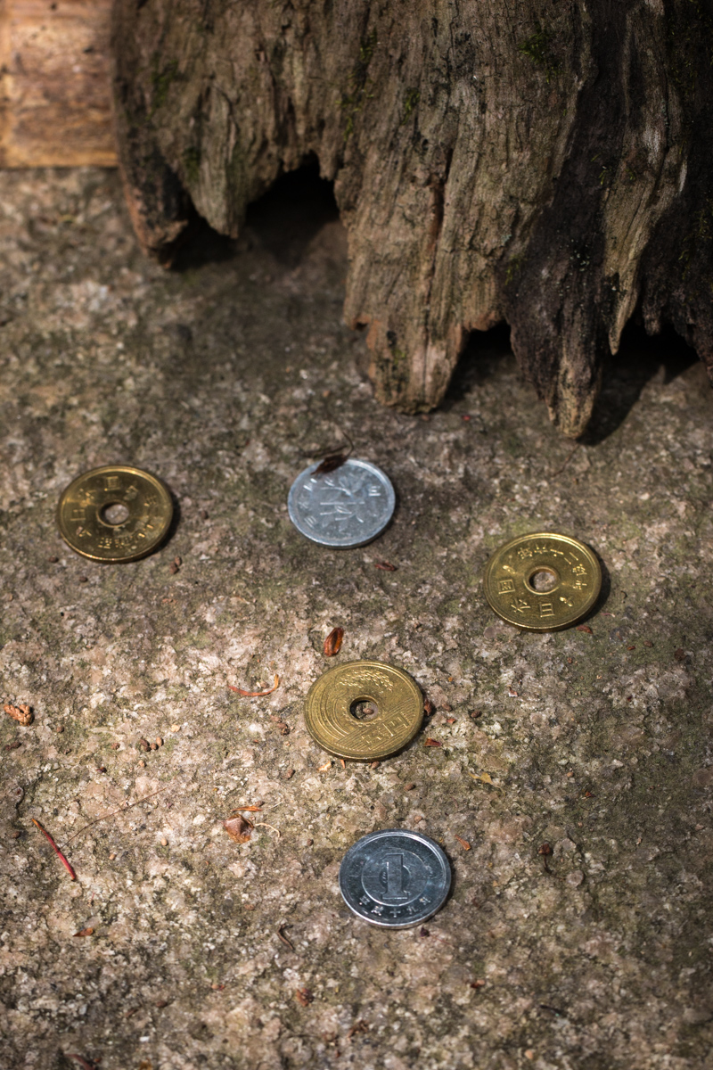 Coins Left as Offerings by the Image of Kannon