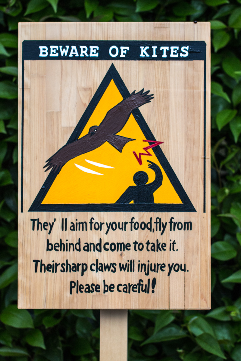 Beware of Kites