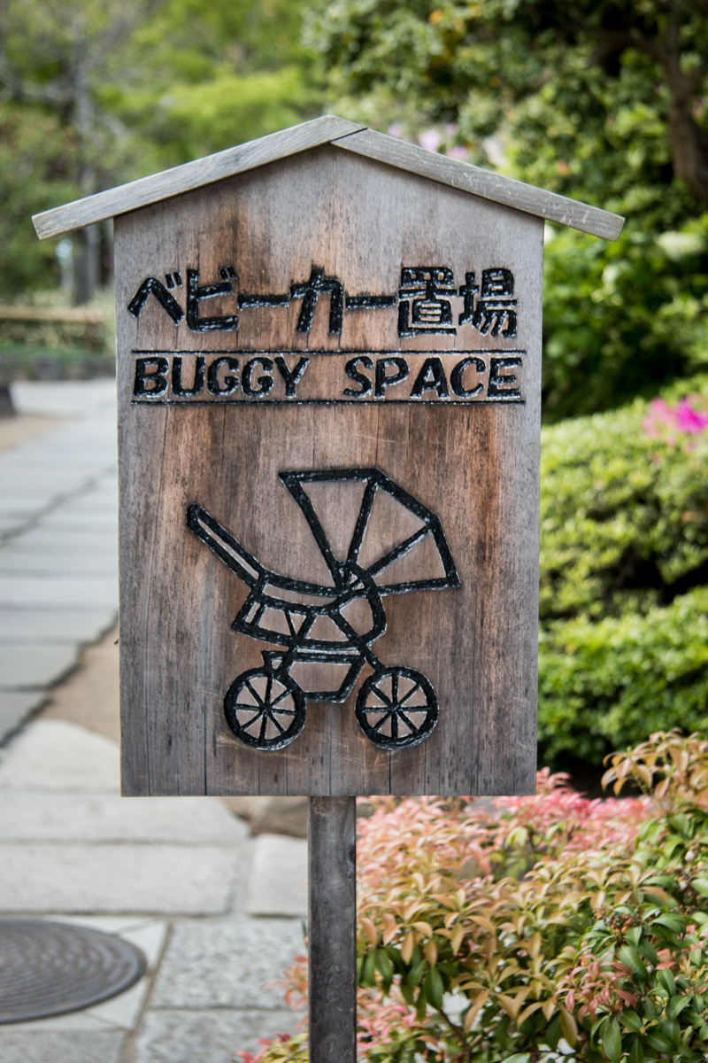 Buggy Space