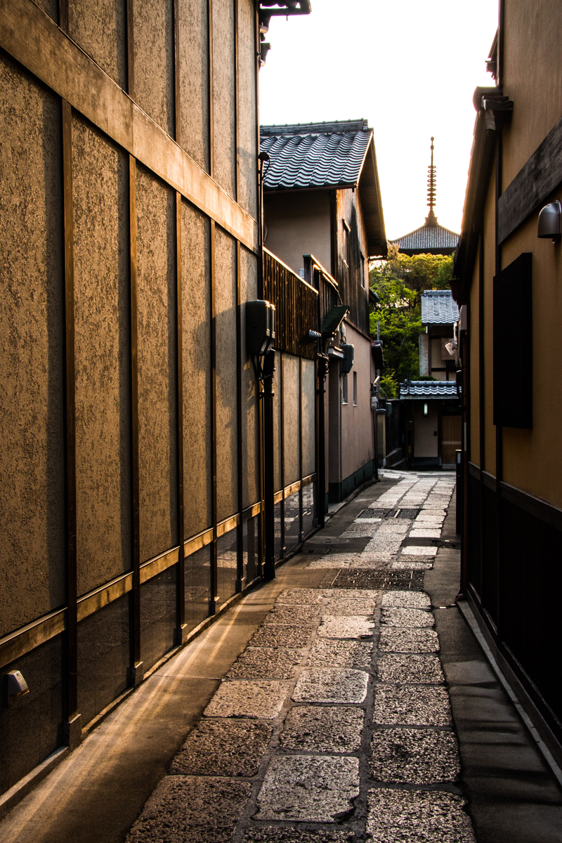 Late Afternoon Laneway