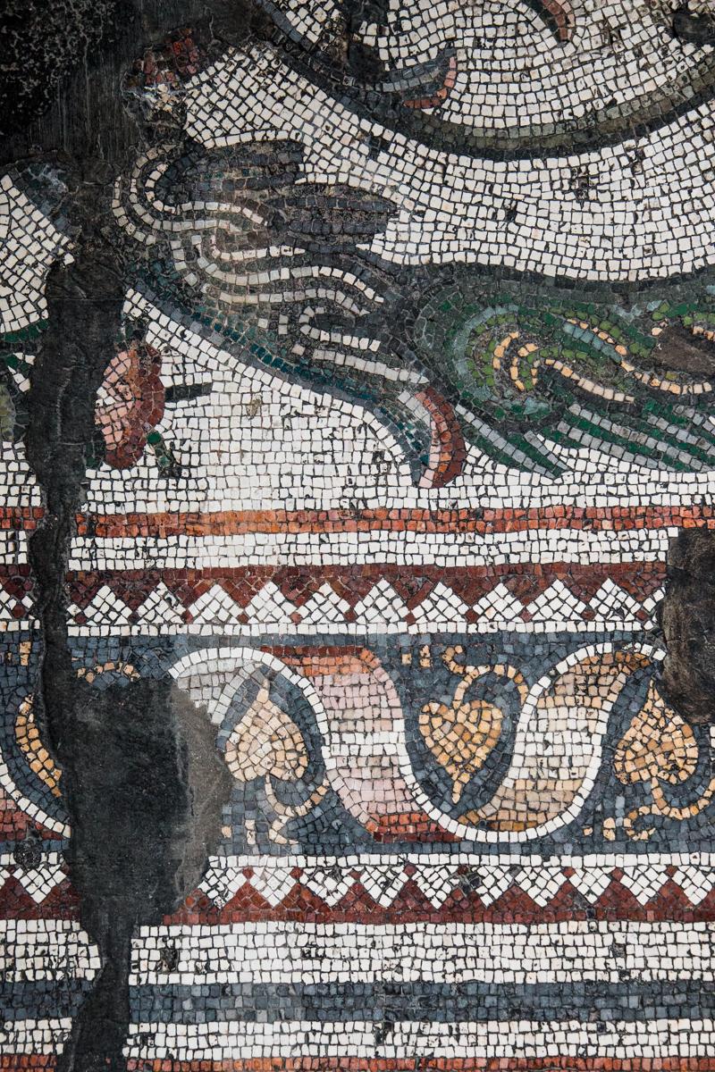 Fragment of Ornamental Border (Detail)