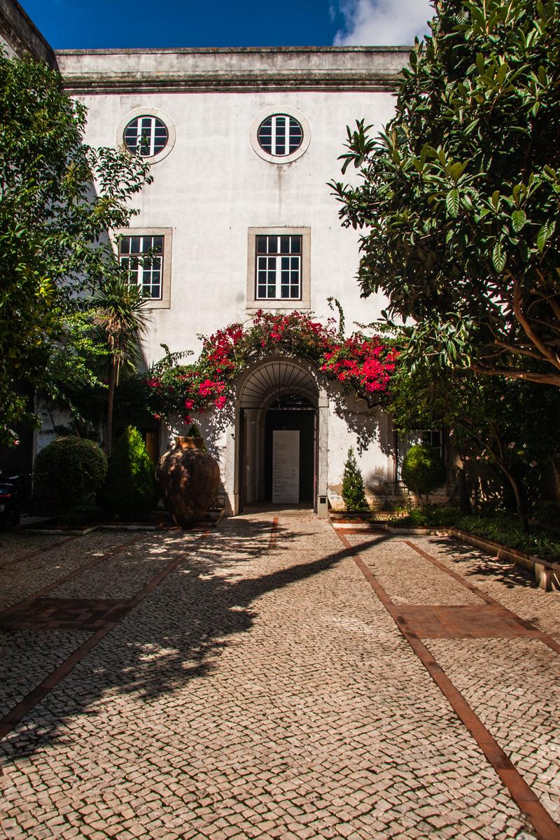 Bougainvillea Courtyard