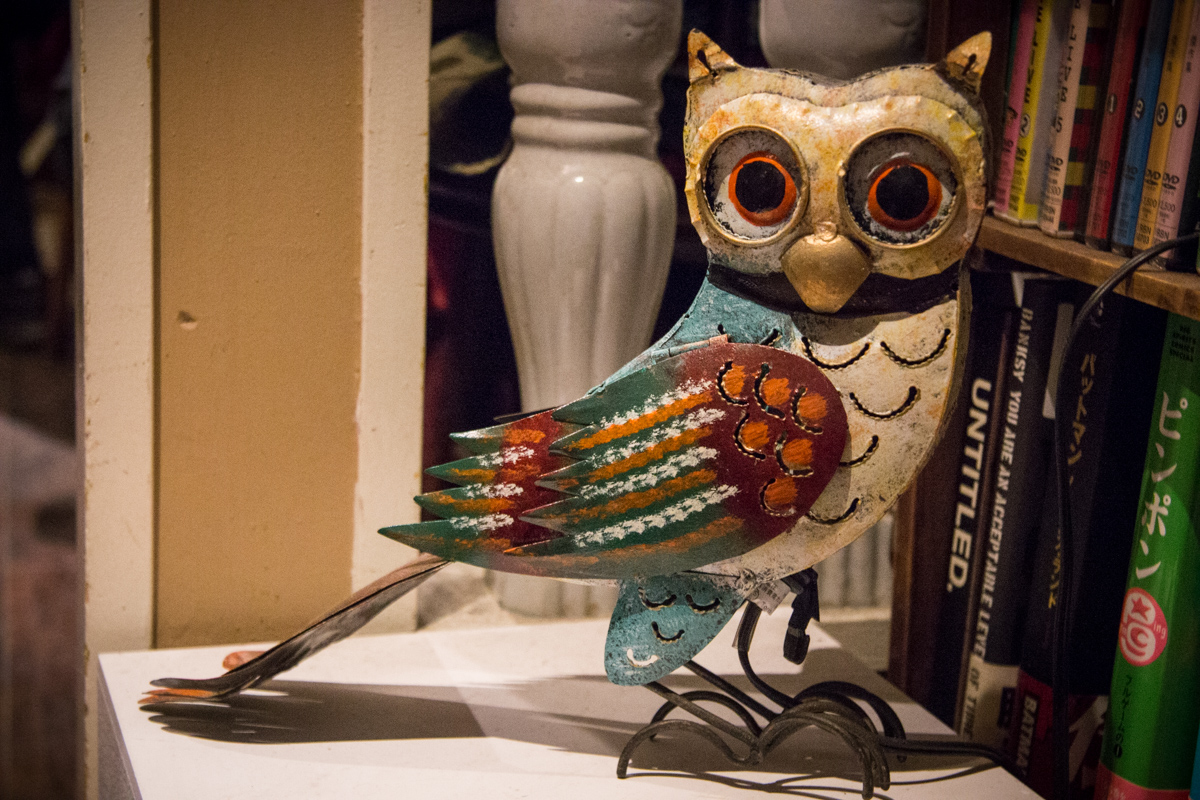 Owl Whimsy