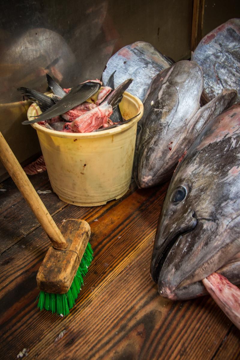 Tuna Scraps