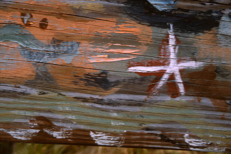 starfish_on_fence.wrk