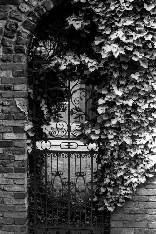 ivy_gate_archway_wrk
